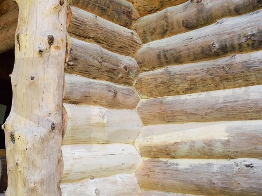 Шлифовка дом из бревна