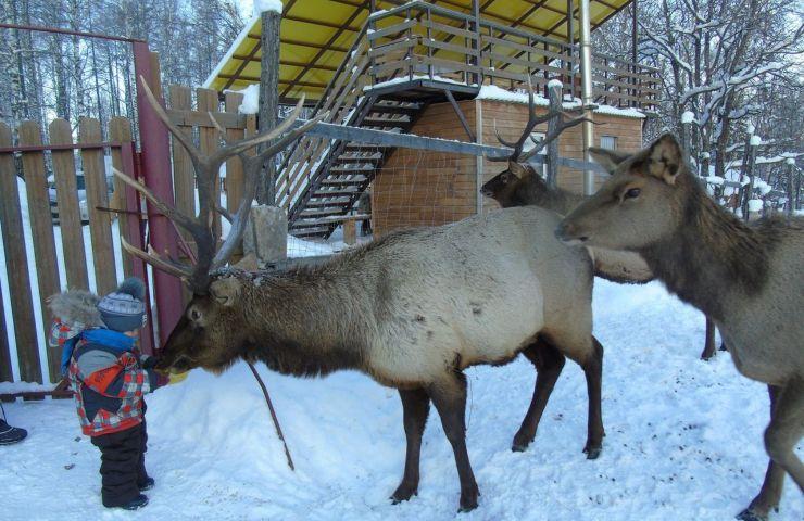 Пеший поход в парк Зюраткуль и ледяной фонтан из Екатеринбурга