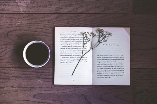 О литературных курсах