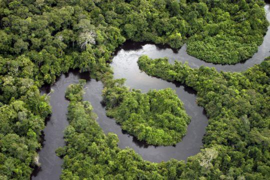 Амазонка путешествие