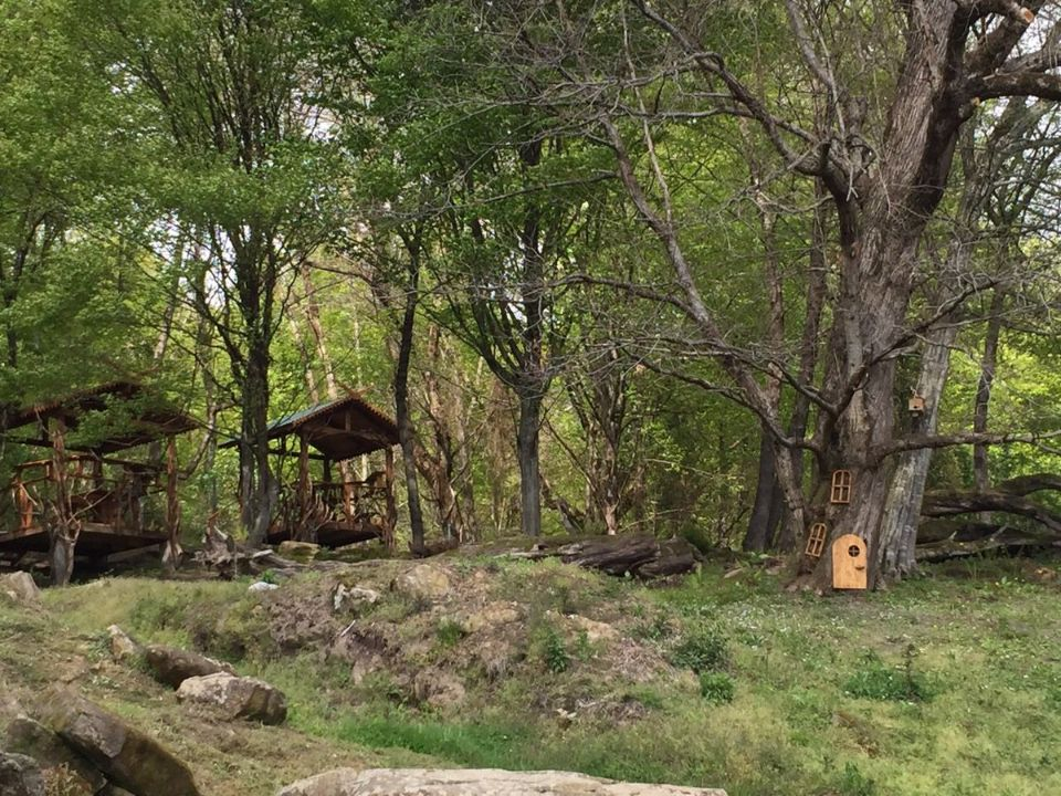 Лесные беседки с мангалами в аренду