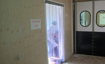 полосовые завесы на дверь