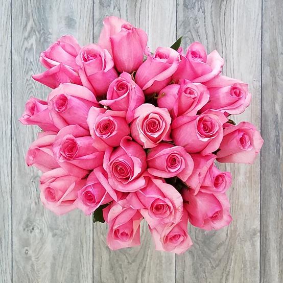Розовая роза 25 штук