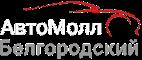 Автосервис Автомолл Белгородский - ремонт генераторов и стартеров