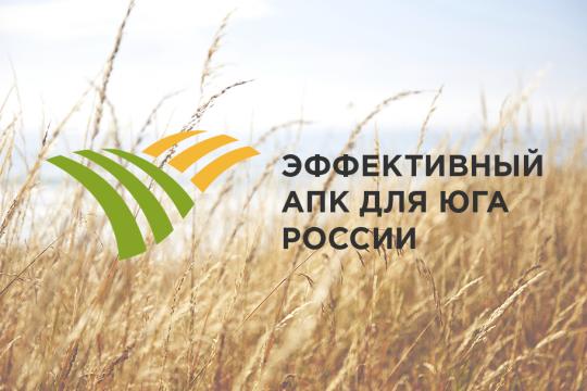 эффективный АПК для Юга России, эксперт Юг
