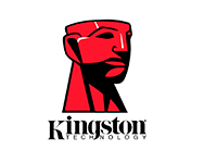 Партнер Kingston купить дёшево