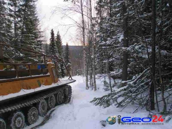 ГТТ зимой в лесу