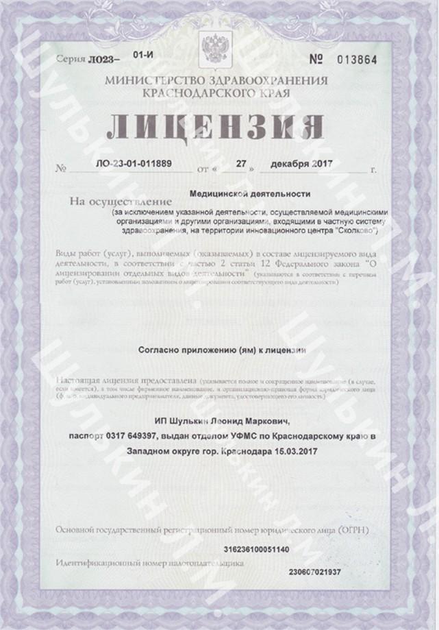 Лицензия ИП Шулькин Л.М.