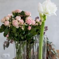 Сохраняем жизнь цветов в срезке