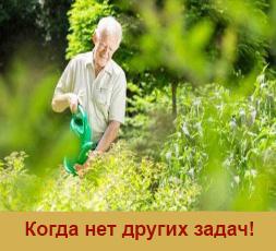 Межевание в Орехово-Зуево за 14500 рублей