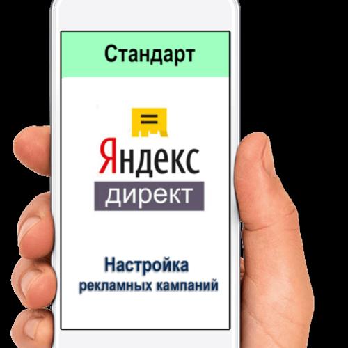 Digital-услуга. Стандартная настройка Яндекс директ в Digital Agency CashFlow