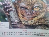 kalendarik_avgust
