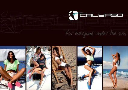 CALYPSO 2015