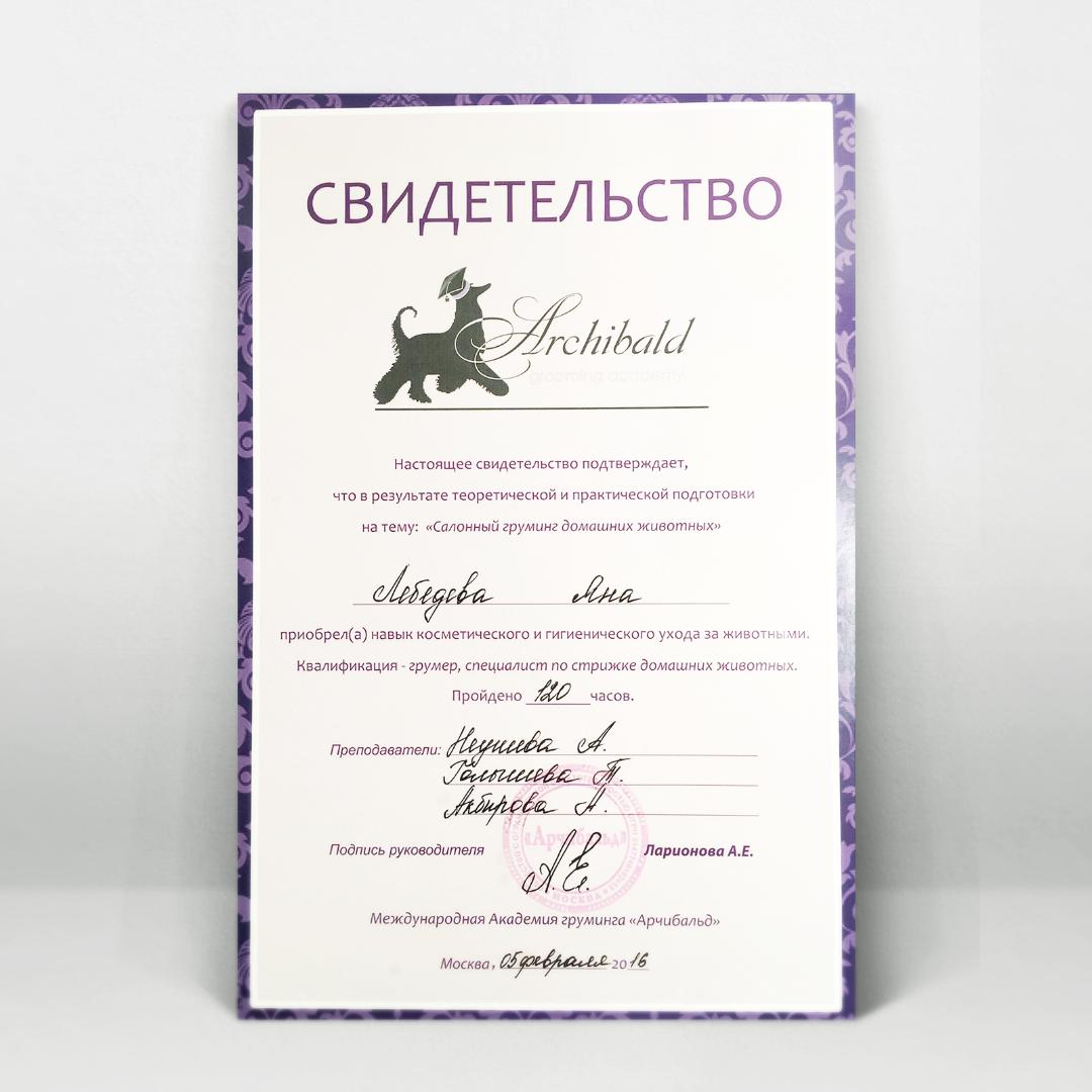Сертификат ведущего мастера ROCK DOG Яны Лебедевой