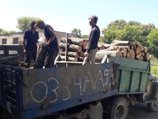 перегрузка дров в лесу