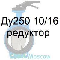 затвор поворотный Ду250 Ру10/16