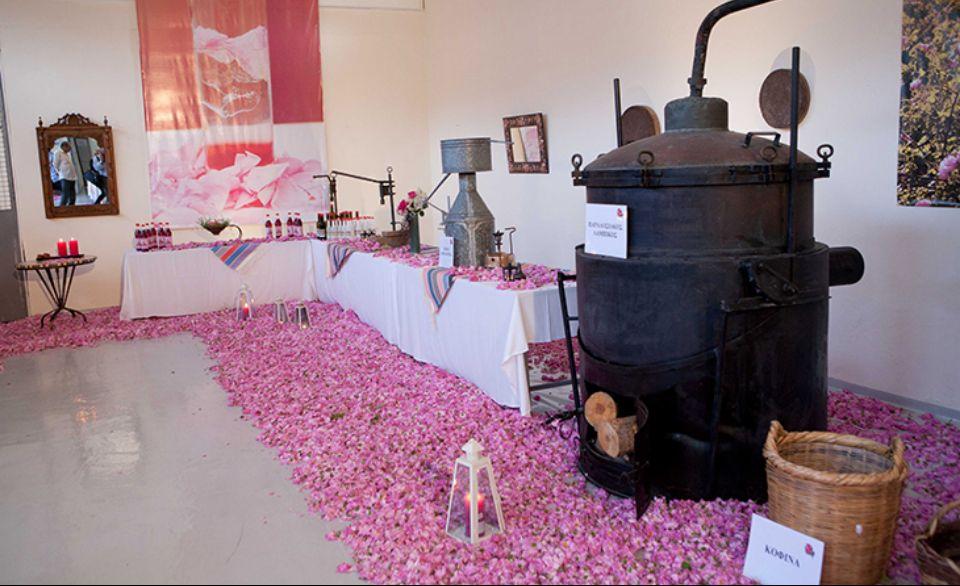 розовая фабрика