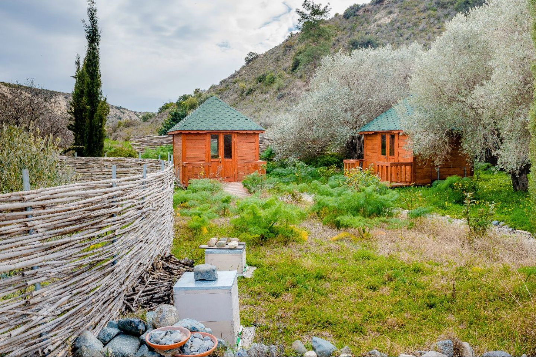 пчелиная пасека на Кипре