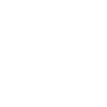 Партнёр Emagicone, WMS Store Manager