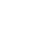 Разработчик сайтов на WordPress