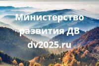 Голосование на Сайте ДВ20025