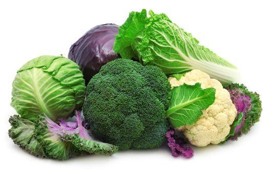 вакуумное охлаждение овощей