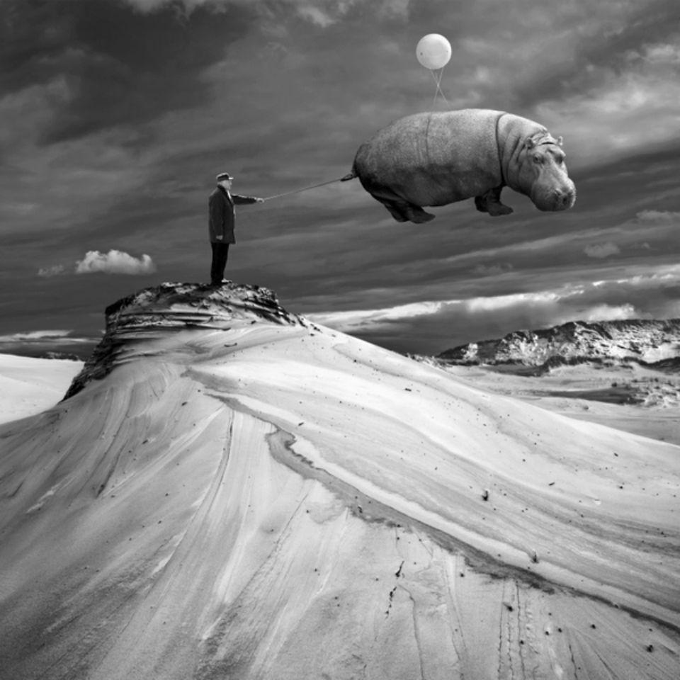 Мастихином и маслом - ирландский художник Девид Койн! Школа раскрытия творческого потенциала Арт-Поток
