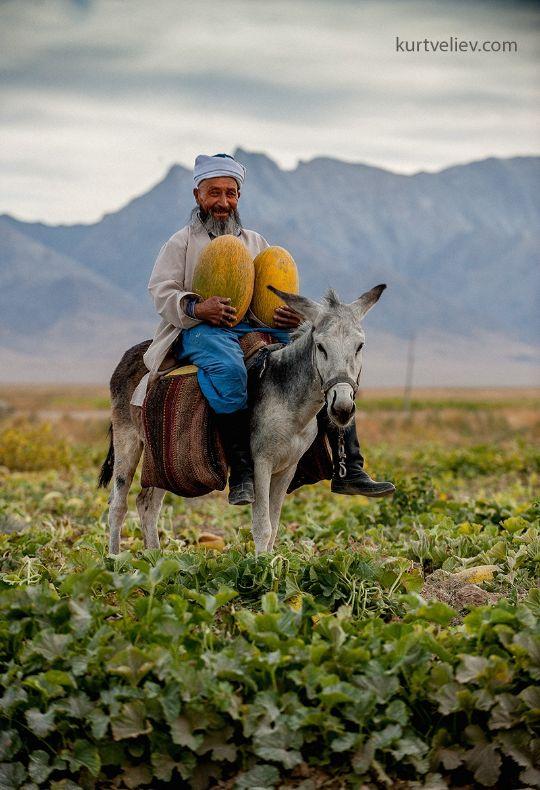 Фрукты Узбекистана