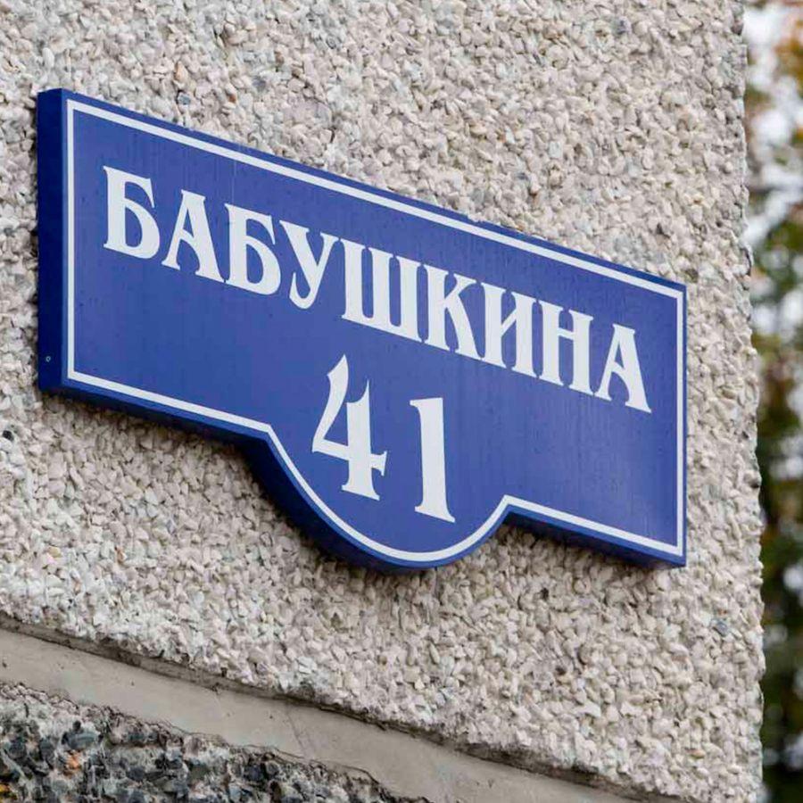 Домовые знаки в Петрозаводске