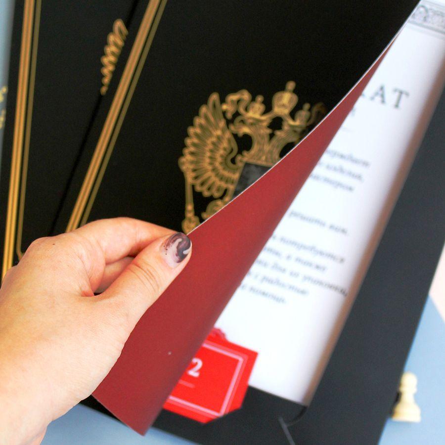 Печать папок в Петрозаводске