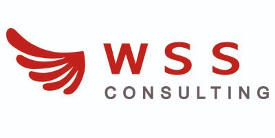 https://wss-consulting.ru/about/